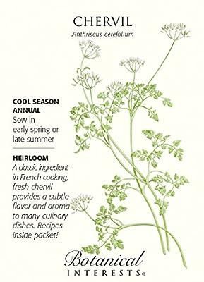 Chervil Seeds - 1 gram - Heirloom by Botanical Interests