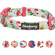 "Blueberry Pet 6 Patterns Easter Spring Scent Inspired Floral Rose Print Turquoise Dog Collar, Large, Neck 18""-26"", Adjustable Collars for Dogs"