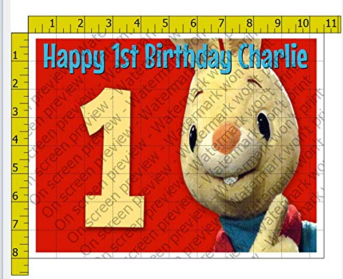 Harry Bunny 1st Birthday Personalized Birthday Edible Frosting Image 1/4 sheet Cake Topper