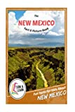 mexico pictures - The New Mexico Fact and Picture Book: Fun Facts for Kids About New Mexico (Turn and Learn)