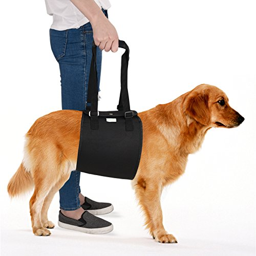 IN HAND Dog Support Harness, Dog Lift Harness with Adjustable Support Sling for Canine Aid, Helps Canine Arthritis, Rehabilitation, Poor Stability, Joint Injuries and Injured Dogs Walk For Sale