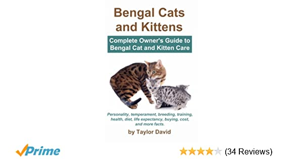 bengal cats and kittens complete owner s guide to bengal cat and