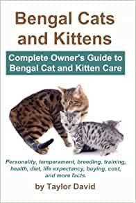 Best Books for Bengal Cats 2019 - Home - Bengal Cat Club