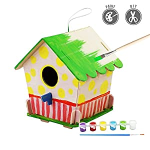 Robud 3-D Painting Puzzle Bird House DIY Wooden Assembly Modle Building Kits With 6 Color Pigments & Brush Arts And Crafts For Kid Children Educational Fun Creative Toys (Bird House 4)