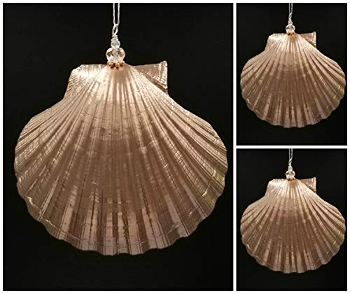 3 Scallop Seashell Christmas Ornaments with Rose Gold Metallic - Scallop Shell Gold Sea
