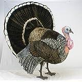 Hansa Toys Life Size Turkey Stuffed Animal (Tamaño: Giant)
