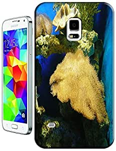 Fishs swimming undersea beautiful cell phone cases for Samsung Galaxy N3