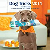 Dog Tricks 2014: 16 Month Calendar - September 2013 through December 2014