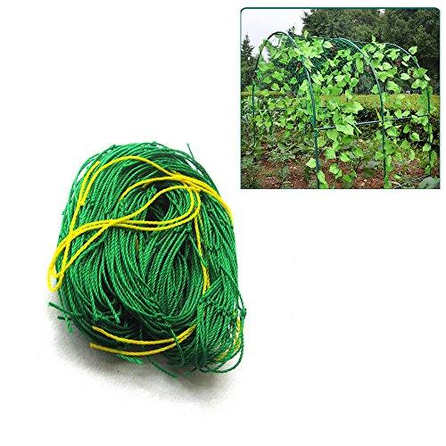 ASSR Enhanced Plant Climbing Nets,Home Garden Durable Green Nylon Trellis Netting Support Climbing size 6x6ft (Netting Plant Support)