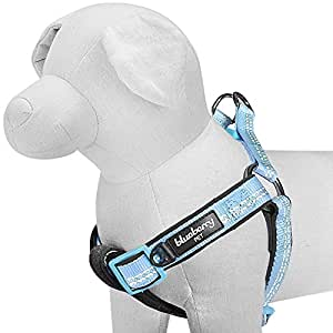 """Blueberry Pet 4 Colors Soft & Comfy New 3M Reflective Step-in Pastel Color Padded Dog Harness, Chest Girth 15.5"""" - 19.5"""", Pastel Blue, Small, Adjustable Harnesses for Dogs"""