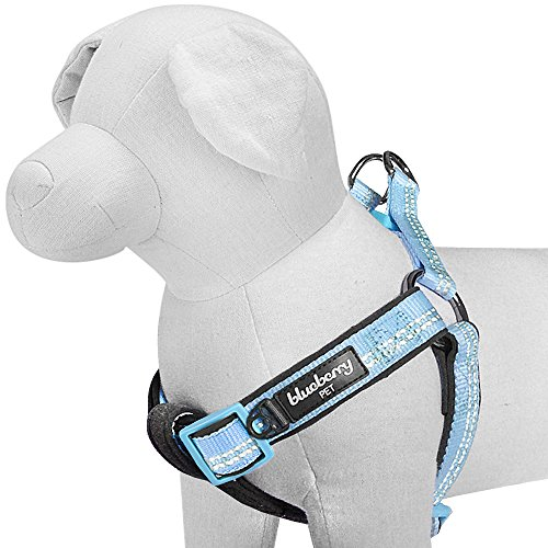 - Blueberry Pet 4 Colors Soft & Comfy New 3M Reflective Step-in Pastel Color Padded Dog Harness, Chest Girth 23.5
