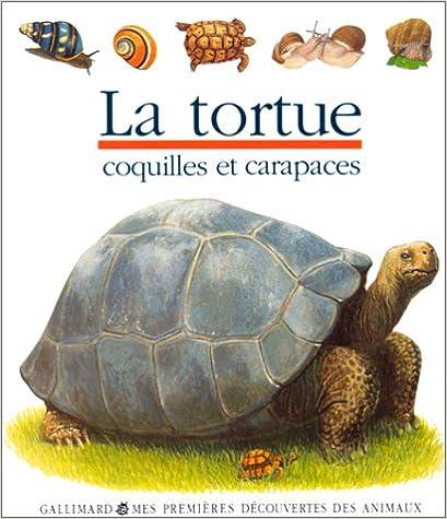 Livre gratuits en ligne La tortue epub, pdf