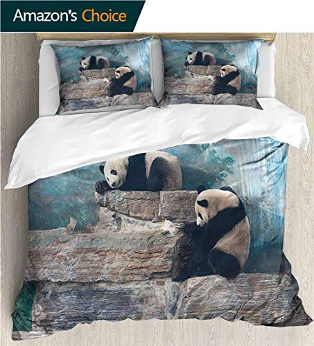 carmaxs-home Bedding Bedspread,Box Stitched,Soft,Breathable,Hypoallergenic,Fade Resistant Colorful Floral Print -3 Pieces-Panda Bear in Beijing Zoo On Stones (87