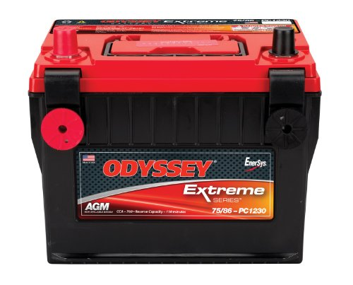 Cutlass Ciera Battery (Odyssey 75/86-PC1230DT Automotive and LTV Battery)