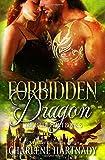 Forbidden Dragon (The Bride Hunt)