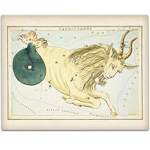 - Capricorn Zodiac Antique Constellation Art Print - 11x14 Unframed Art Print - Great Home Decor or Gift Under $15 to Astrology Enthusiasts