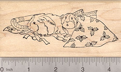 Christmas Guinea Pig Rubber Stamp, Two Cavies with Holiday Gift Wrapping Paper