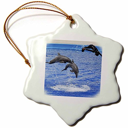 3dRose orn_37747_1 Two Dolphins and A Trainer Diving at Oceanographic Aquarium in Valencia, Spain-Snowflake Ornament, 3-Inch, Porcelain by 3dRose