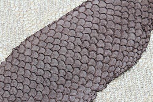 Veg Tan Asia Carp Fish Skin Hide Leather Craft Supply various color (Jackson tan) ()