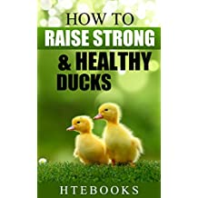 How To Raise Strong & Healthy Ducks: Quick Start Guide (How To eBooks Book 49)