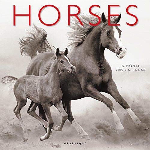 Graphique Horses Wall Calendar, 16-Month 2019 Wall Calendar with Scenic Horse Photographs, 3 Languages & Major Holidays, 2019 Calendar, 12
