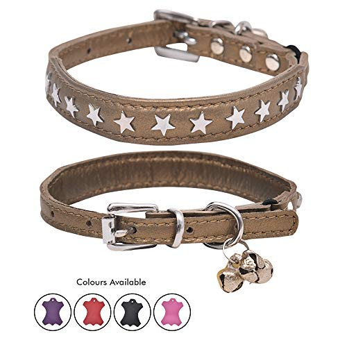 - Ultra Soft Real Lamb Leather Star Charm Studded Cat Collar with Break Away Safety Elastic Embellished with Detachable Handcrafted Indian Bells (One Size, Gold)
