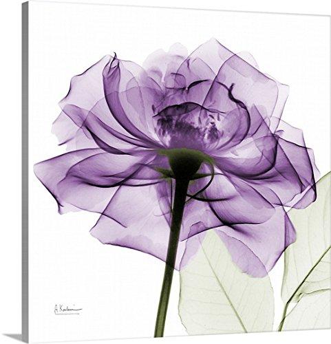 Albert Koetsier Premium Thick-Wrap Canvas Wall Art Print