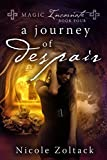 A Journey of Despair (Magic Incarnate Book 4)