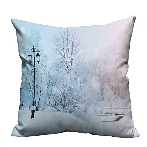 YouXianHome Decorative Throw Pillow Case Landscape with Frozen Leafless Trees ICY Snowflakes Hazy Wonderland Panorama Baby Blue Ideal Decoration(Double-Sided Printing) 26x26 inch -