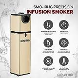 Gourmia GSM160 Portable Infusion Smoker Cool Smoke