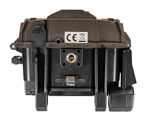 Spypoint LINK-EVO SpyPoint Link Evo Cellular Trail Camera Brown by Spypoint (Image #5)