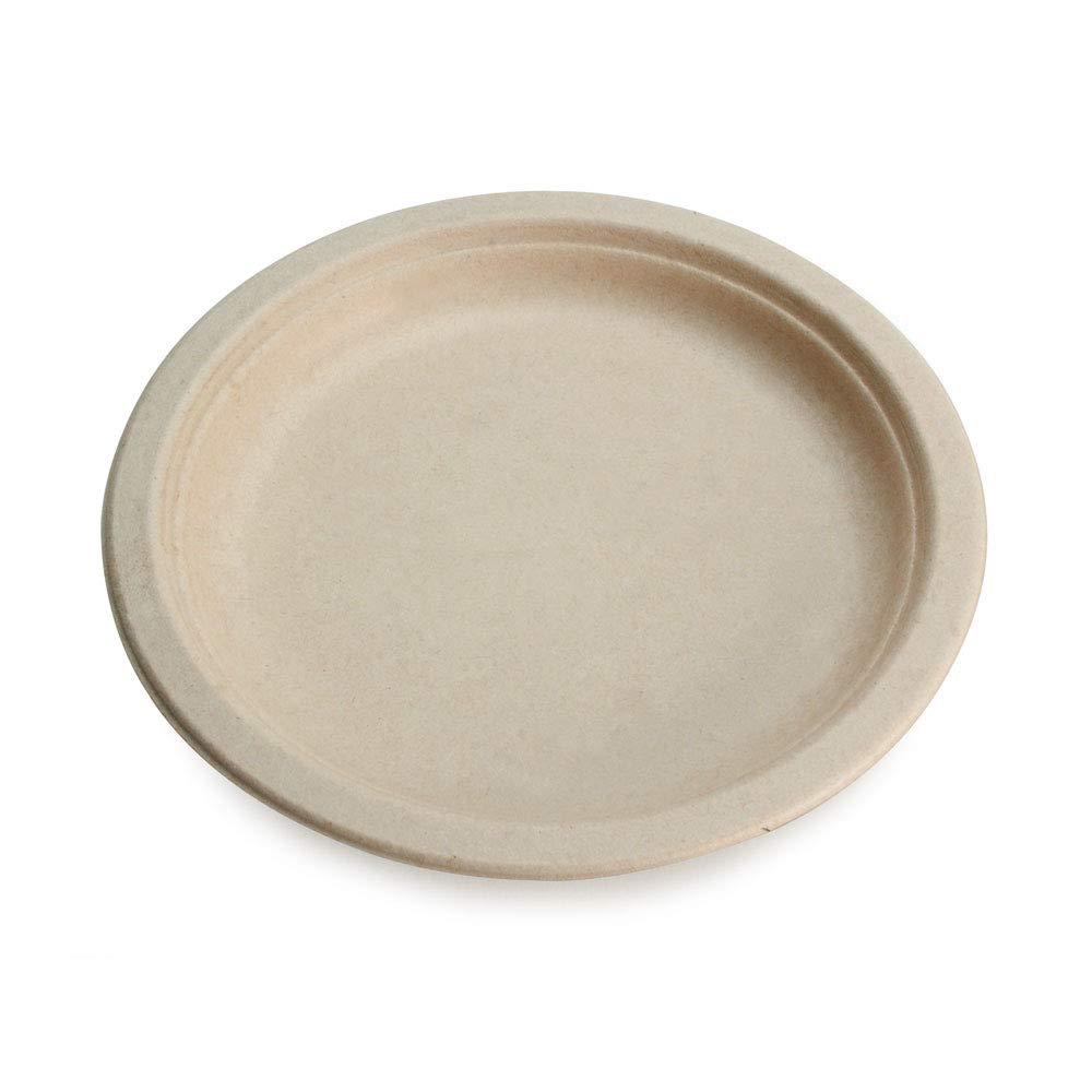 Earth's Natural Alternative ECOP005pk125 Wheat Straw Fiber Bagasse (Sugarcane) Tree Free, 125 Pack, 10'' Plate, White