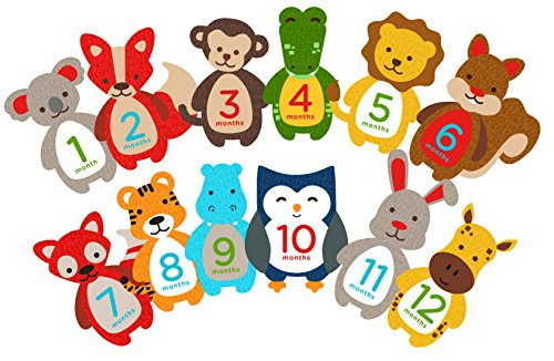- Pearhead First Year Monthly Milestone Felt Animal Photo Sharing Baby Belly Stickers, 1-12 Months