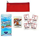 Public Toilet and Restroom Survival Kit, Toiletry Bag for Germ Protection, Flushable Wipes and Toilet Seat Covers