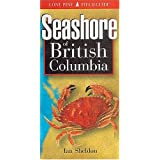 Seashore of British Columbia