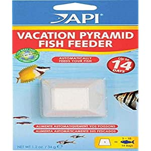 API Automatic Fish Feeder