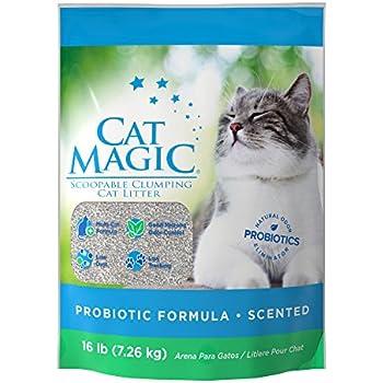 Amazon Com Cat Magic Scented Clumping Clay Cat Litter 16