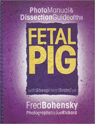 Photo Manual Dissection Guide Of The Fetal Pig