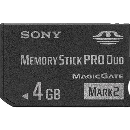 Sony Memory Stick Pro Duo Tarjeta de Memoria Flash: Amazon ...