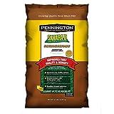 Pennington Sahara II Bermuda Grass Seed - 50 Lbs.