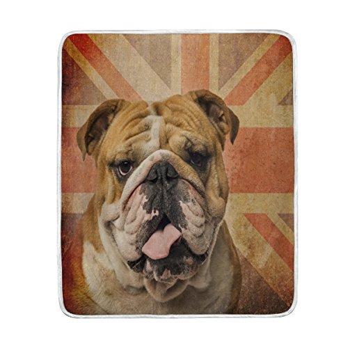 english bulldog union jack - 6