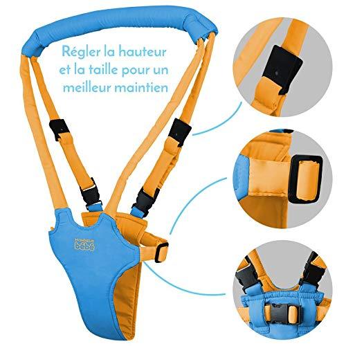 Monsieur B/éb/é /® Portabeb/é Ayuda para caminar Dos colores andador Norma EN 13210