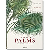 Martius: The Book of Palms XL