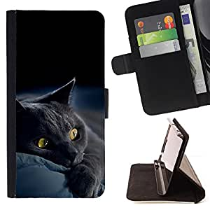 BullDog Case - FOR/Apple Iphone 4 / 4S / - / Siamese cute paw kitten soft furry beast /- Monedero de cuero de la PU Llevar cubierta de la caja con el ID Credit Card Slots Flip funda de cuer