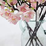 JAROWN-5-Pcs-Artificial-Flowers-Silk-Cherry-Blossom-Branch-Fake-Sakura-Green-Leaves-for-Wedding-Room-Decoration-Light-Pink