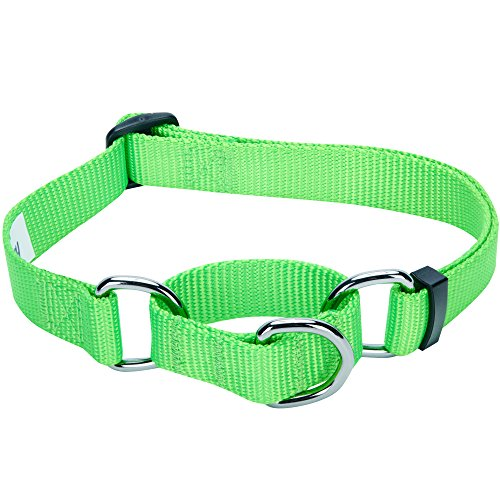 Blueberry Pet 19 Colors Safety Training Martingale Dog Collar, Neon Green, Small, Heavy Duty Nylon Adjustable Collars for Dogs