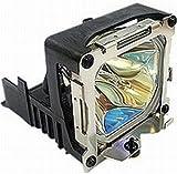 BenQ 5J.J2D05.011 Projector Lamp