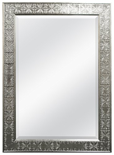 MCS 24x36 Inch Stamped Medallion Wall Mirror, 32x44 Inch Overall Size, Champagne Silver (47700)