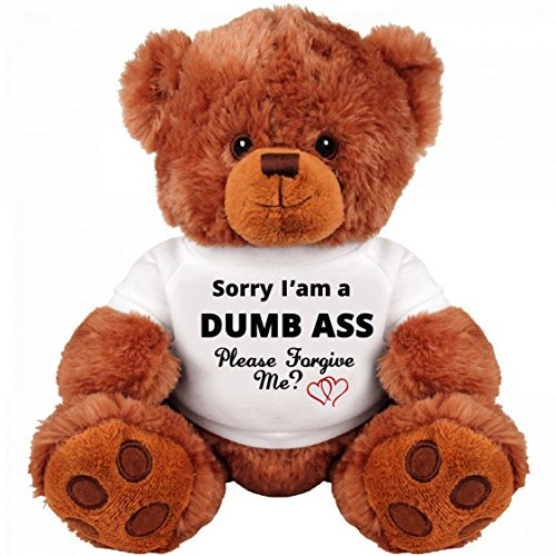 Sorry and Forgive Me Gift: Funny Teddy Bear Couple Gift: Medium Teddy Bear Stuffed Animal