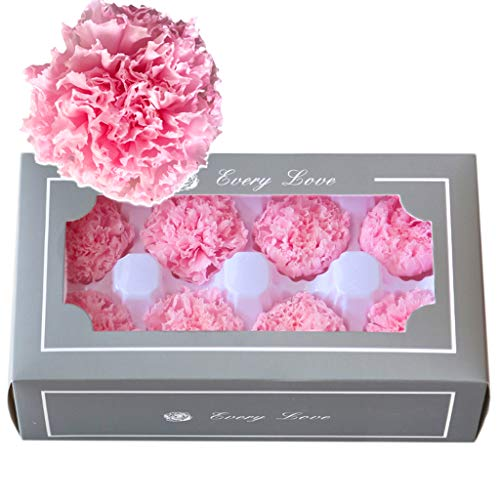 (Formemory 8Pcs Immortal Flower Carnations Gift Box, Creative Gifts for Women Mother's Day Pink)